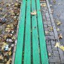 Бутылки от водки и окурки вокруг скамеек, машины на газонах: Ион Чебан возмутился поступками некоторых кишинёвцев (ФОТО)