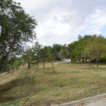 В собственность муниципалитета вернулся ещё один незаконно отчужденный земельный участок