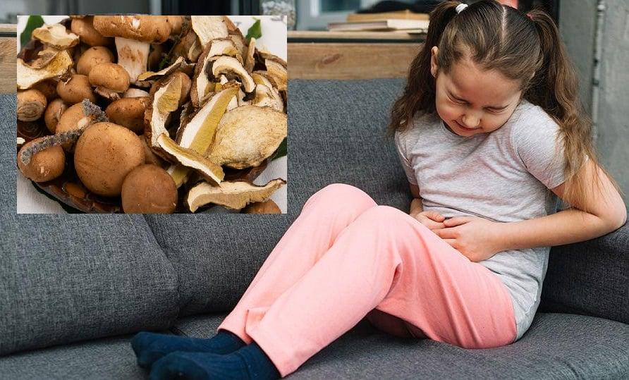 Врачи бьют тревогу: всего за 3 дня 10 детей отравились грибами