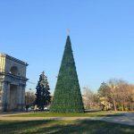 Праздник всё ближе! В центре Кишинёва установили новогоднюю ёлку (ФОТО)