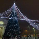 Как выглядят главная новогодняя ёлка страны и украшенный сквер Кафедрального собора (ФОТО)