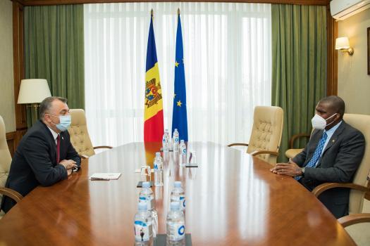 Ион Кику провёл встречу с послом США