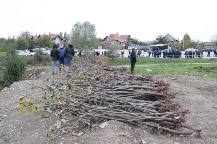 В столице высадили ещё более 10 тысяч деревьев. Чебан призывает граждан участвовать в озеленении города