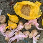 Взялись за старое: двух членов наркогруппы поймали при перевозке запрещённых веществ (ВИДЕО)