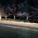 Не увидел в темноте: в Оргееве водитель задавил девушку