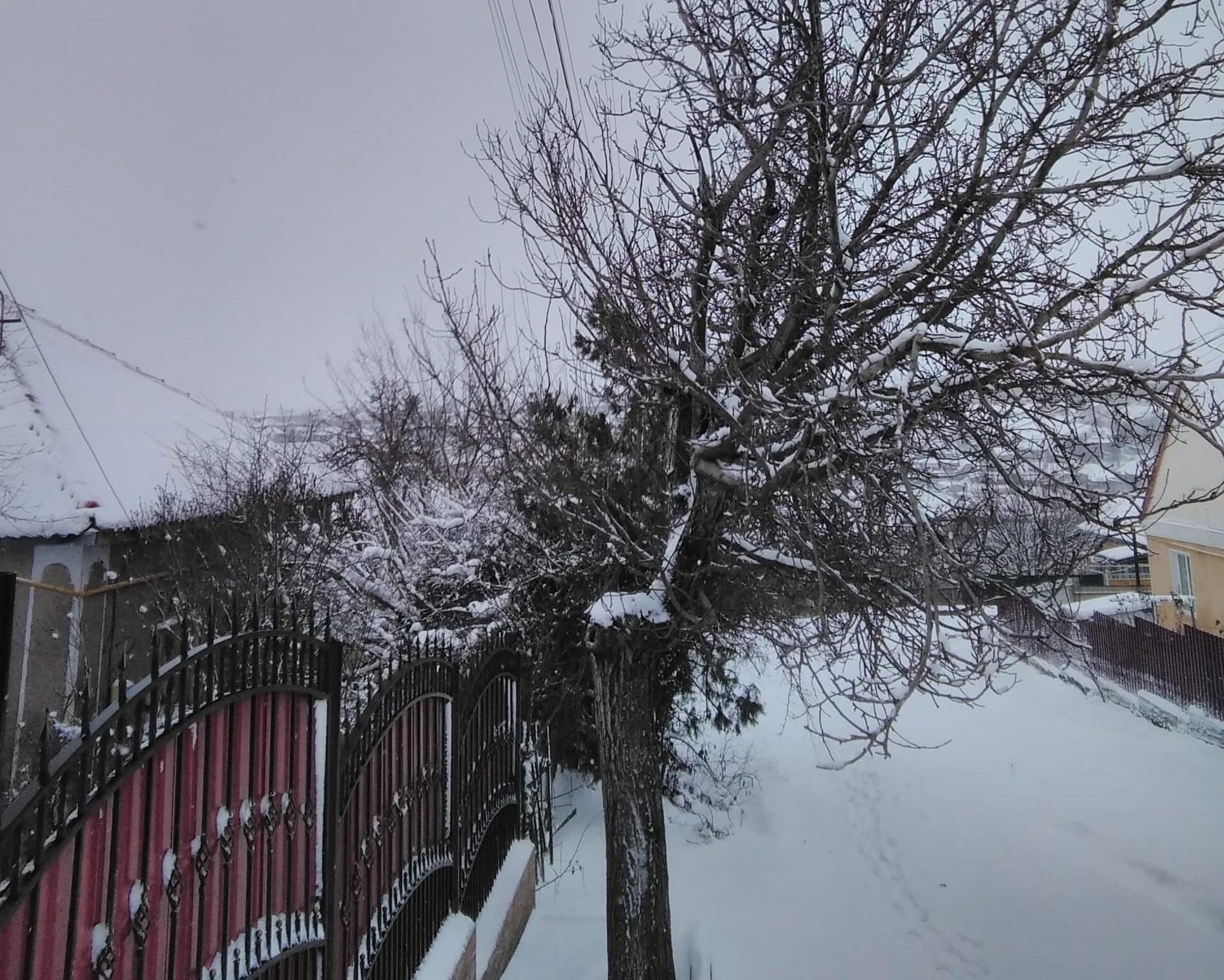 Более 20 населённых пунктов остались без света из-за снегопада