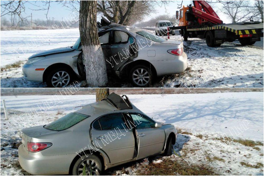 Занесло на скользкой дороге: автоледи на Lexus врезалась в дерево