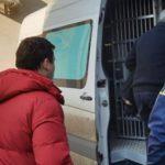Работали без документов: четырёх иностранцев-нелегалов вышлют из страны
