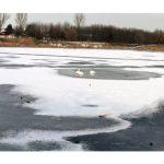 Граждан предупреждают: на водоёмах тонкий лед, выходить на него опасно