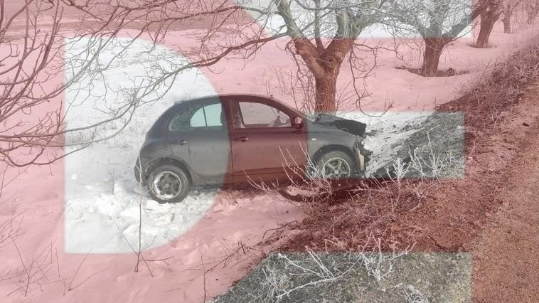 В Фалештах водитель не справился с управлением и врезался в дерево