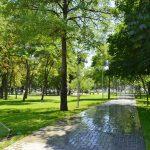 Чебан: Все восстановленные зелёные зоны Кишинёва будут иметь системы полива