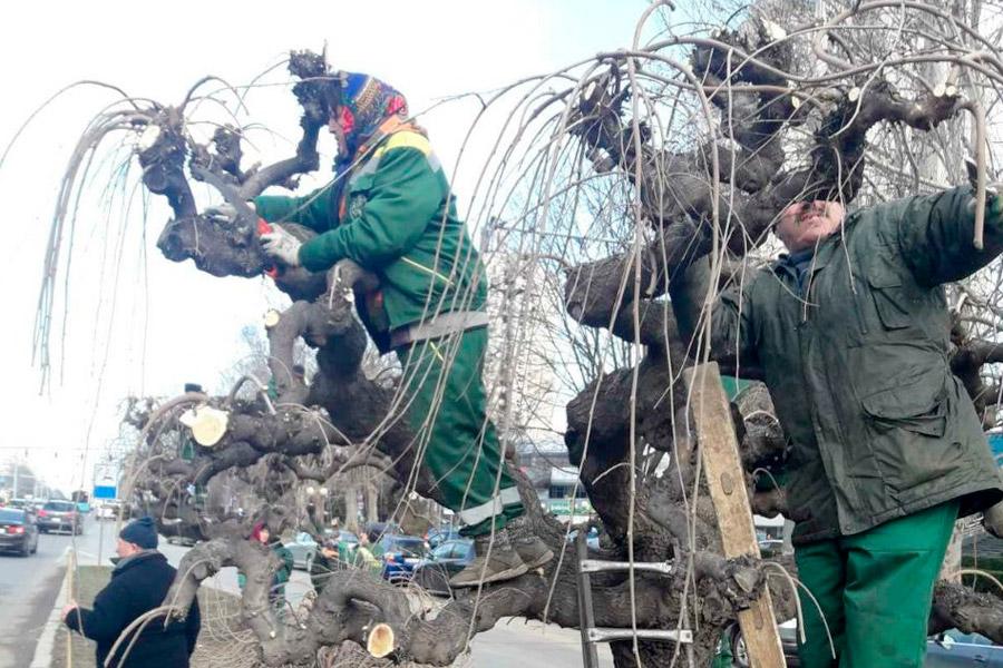 """В Кишинёве стартовала """"Весенняя генеральная уборка"""""""