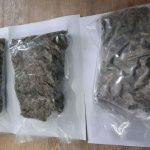 Выращивали марихуану и сбывали её: полиция задержала шестерых наркоторговцев (ФОТО)