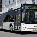 МАЗ и ISUZU представили лучшие предложения для закупки 100 автобусов для Кишинёва