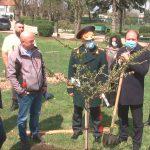 Ион Чебан принял участие в посадке деревьев в Ботаническом саду
