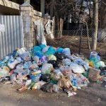 Чебан: Владельцы частных домов должны иметь контракт с Autosalubritate на вывоз своего мусора, а не выбрасывать его где попало
