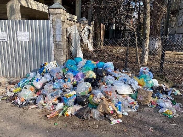 От 900 до 9000 леев: в Кишиневе начнут штрафовать за разбрасывание мусора