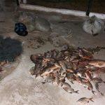 Пограничники задержали любителей незаконной рыбалки