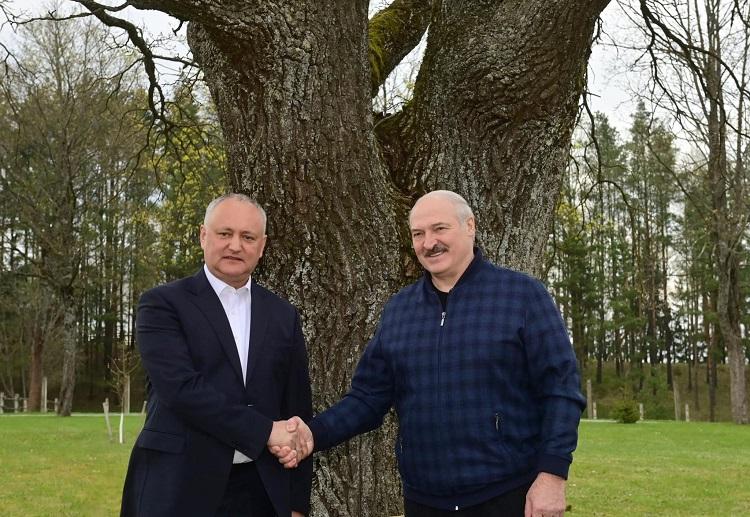 Обстоятельный диалог: о чем говорили Игорь Додон и Александр Лукашенко (ФОТО)