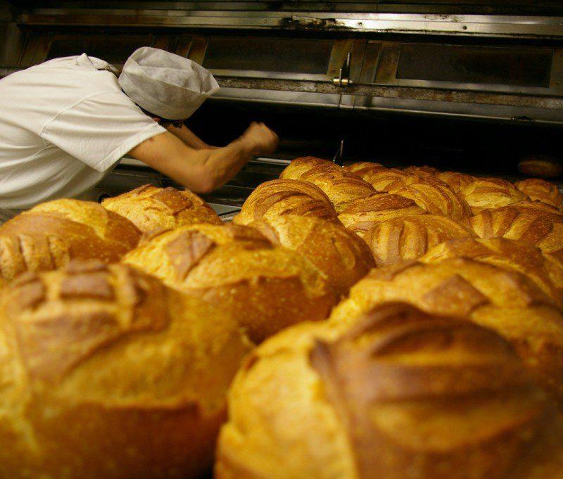 Хлебом не корми