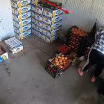Вытащила из сумки продавца 231,5 тыс леев: момент кражи попал на видео