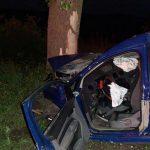 Смертельное ДТП в Криулянах: машина врезалась в дерево, двое погибли