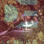 Трагическое ДТП в Яловенах: машина влетела в дерево, водитель скончался на месте
