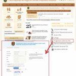 Без очередей и столпотворения: получателей пособий призывают записываться онлайн на приём в кассы соцстрахования