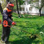 В столице ведутся работы по скосу травы в зелёных зонах