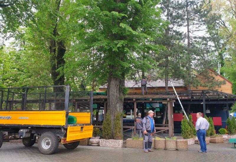 В Соборном парке сносят летнюю террасу: договор об аренде земельного участка истёк