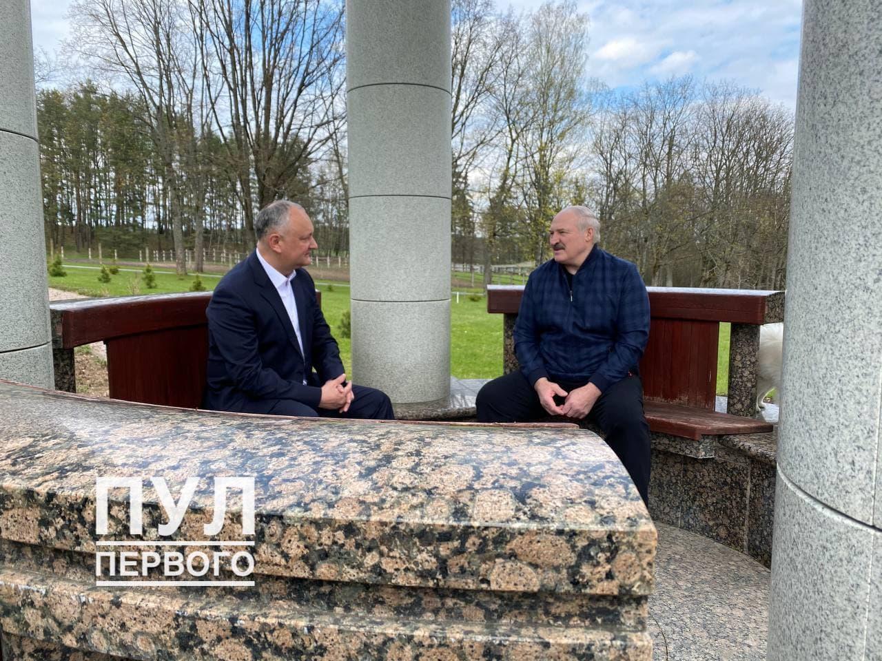 Игорь Додон проводит неформальную встречу с Александром Лукашенко (ФОТО)