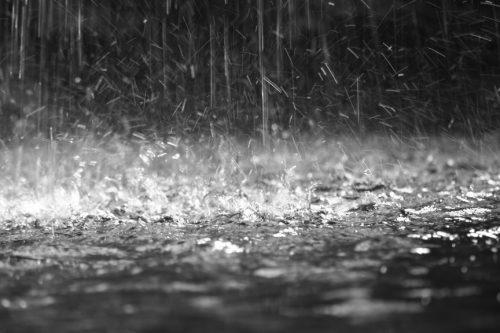 Разгул стихии: в ГИЧС рассказали о последствиях вчерашнего дождя