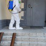 В жилых домах столицы проводят мероприятия по уничтожению грызунов