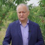 Додон: Нужно спасать аграриев, а не удовлетворять чьи-то политические амбиции (ВИДЕО)