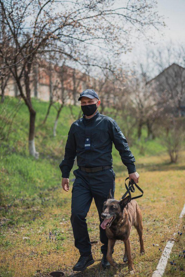 Служебная собака пограничников помогла задержать вора