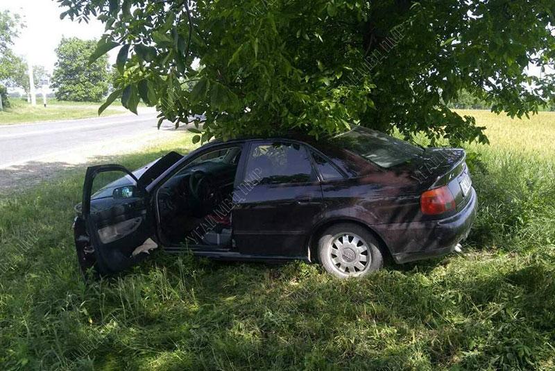 ДТП на трассе: пьяный водитель врезался в дерево