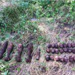 В Чимишлии сапёры нашли и обезвредили 30 боеприпасов