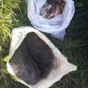В приграничной зоне поймали двух рыбаков-нарушителей (ВИДЕО)