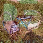 В Криулянах легковушка сбила пенсионера на велосипеде