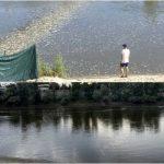 Трагедия на воде: в Днестре утонула 13-летняя девочка