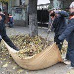 В столице начинается кампания по осенней уборке города