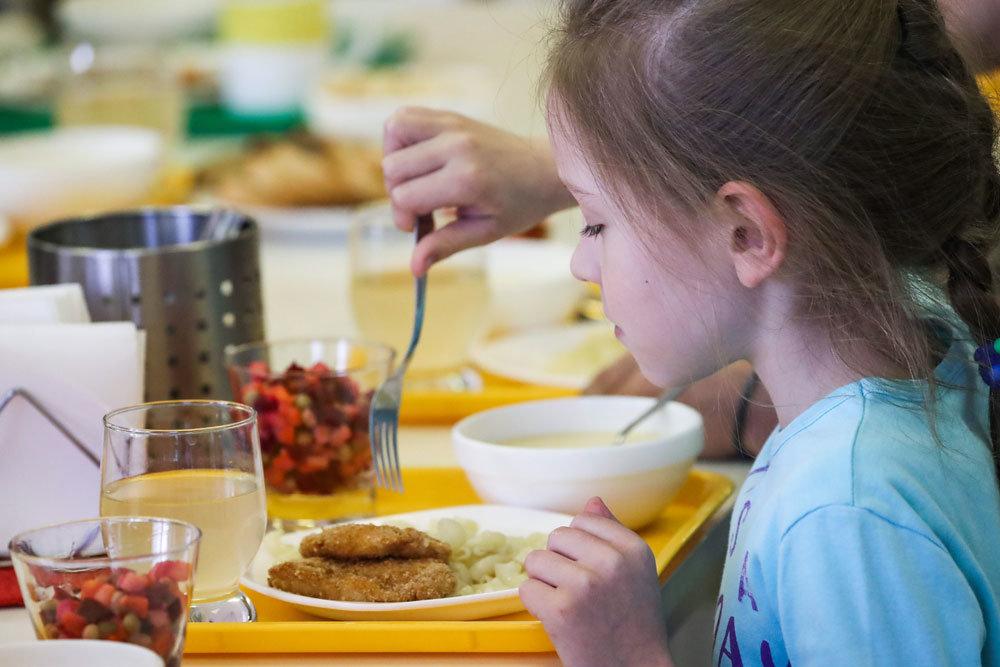 Депутаты ПДС считают, что бесплатно кормить в школах нужно только некоторых детей