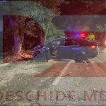 ДТП на Ботанике: машина врезалась в дерево, водитель в больнице