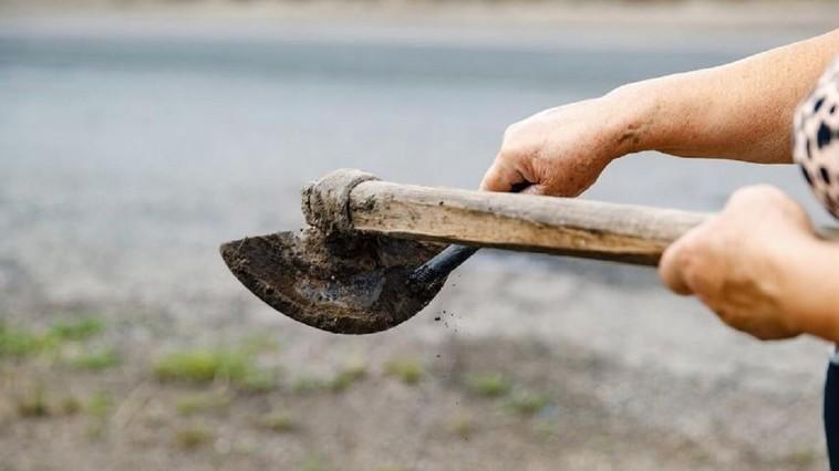 Отправляли в трудовое рабство: преступная группа эксплуатировала молдаван на полевых работах (ВИДЕО)