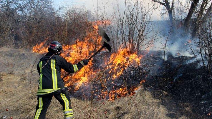 За минувшие сутки в Молдове потушили более 20 очагов возгорания растительности
