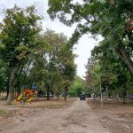 На Старой Почте появится благоустроенная зелёная зона: работы уже начались