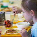 Депутаты ПДС вновь выступили против обеспечения школьников бесплатным питанием