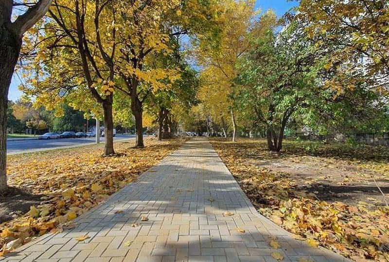 На Ботанике продолжаются работы по восстановлению 5 скверов и дворов