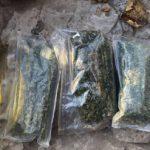 Трое жителей Оргеева выращивали и сбывали марихуану (ВИДЕО)